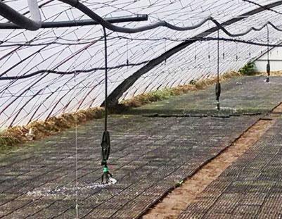 温室大棚吊悬微喷